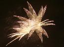 fireworks150910.jpg