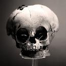 2510.skull.jpg