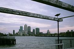 Rare Birds at Canary Wharf
