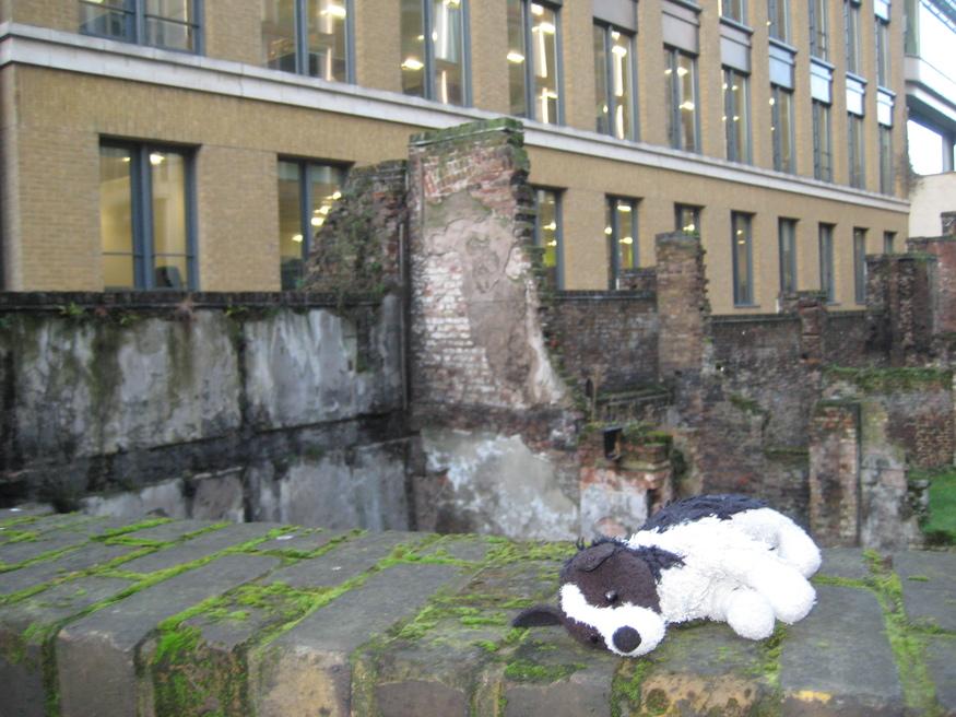 abandoned-doggie-sleeps.jpg