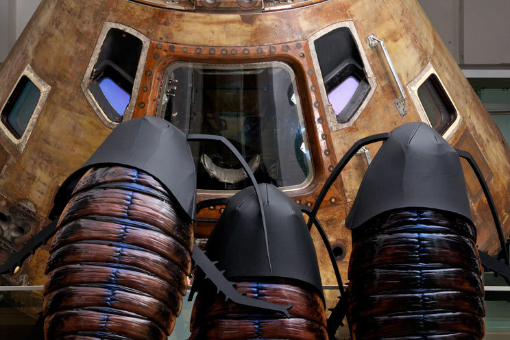 Tour The Science Museum In A Cockroach Costume