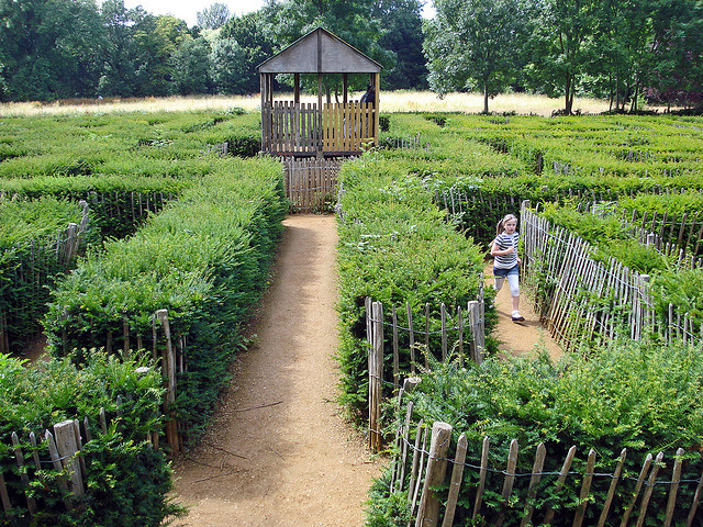The Brent Park Millennium Maze, a 'proper biggie', as photographed by Diamond Geezer.
