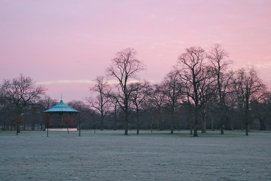 Pink dawn. By becksldrt.