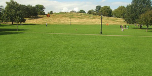 A New Summit For Primrose Hill?