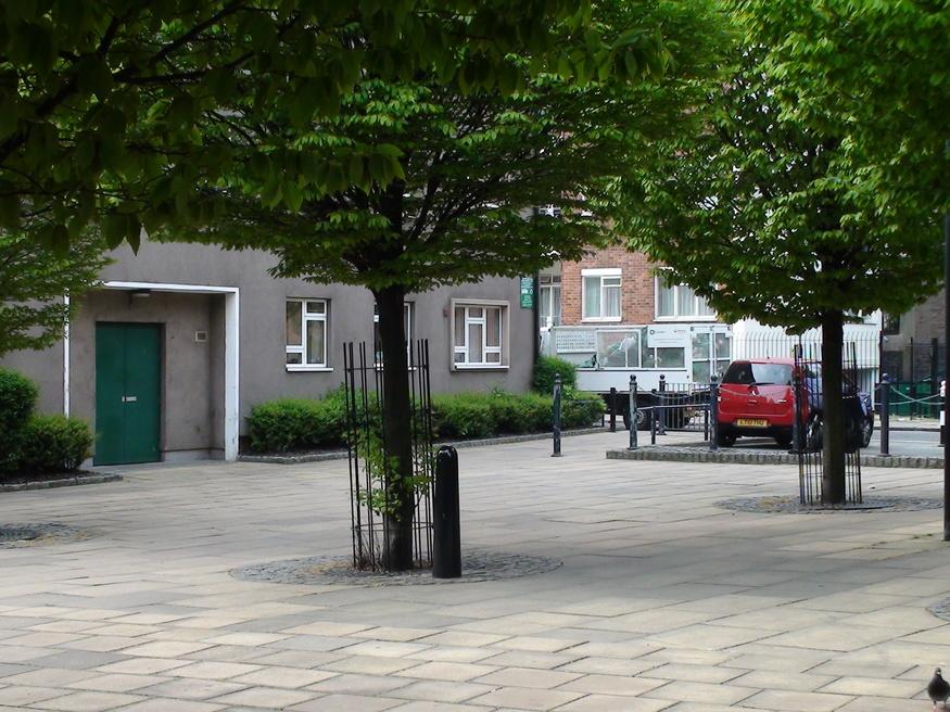 Tree-hugging bollard near Wakefield Street.