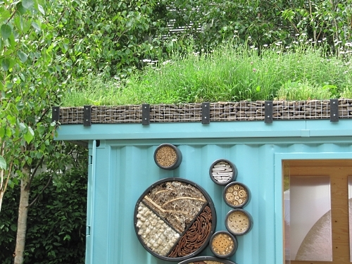 Green roof on a shipping container garden room, in the New Wild Garden