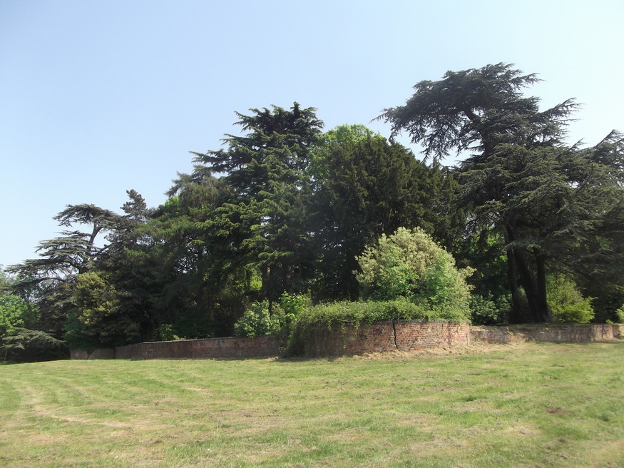 Last remains of Henry VIII's Nonsuch Palace.