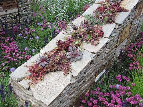 Beautifully planted wall in the Royal Bank of Canada's New Wild Garden