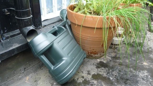 Rainwater, drainpipe, watering can, garden