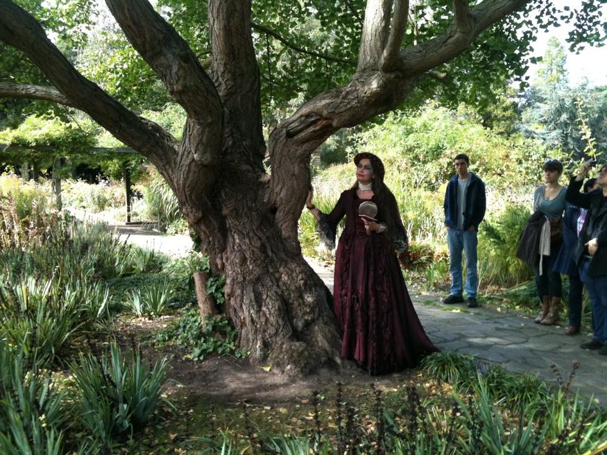 Blake's Angel Oak Replanted on Peckham Rye