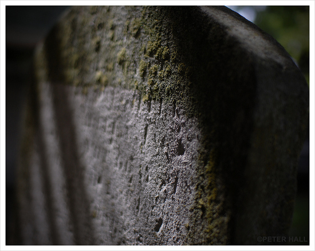 'Dappled' in St Mary's Church graveyard, Walthamstow by Peter Photographic