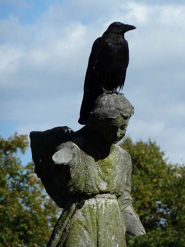Crow, West Brompton Cemetery by victorianlondon