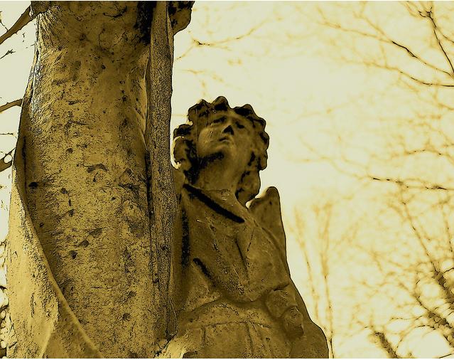Ealing and Old Brentford Cemetery by HoosierSands