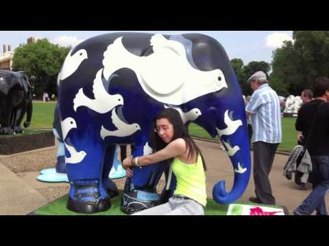 View The Entire Elephant Parade In Two Places