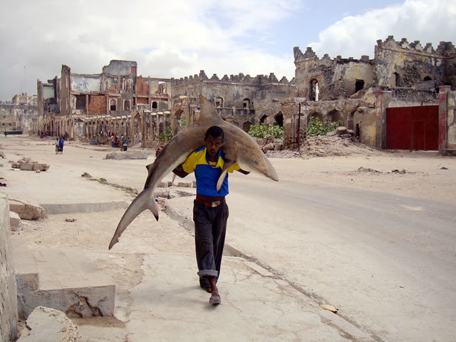 1st Prize Daily Life Single: Feisal Omar, Somalia, for Reuters. Man carries a shark through the streets of Mogadishu, Somalia, 23 September