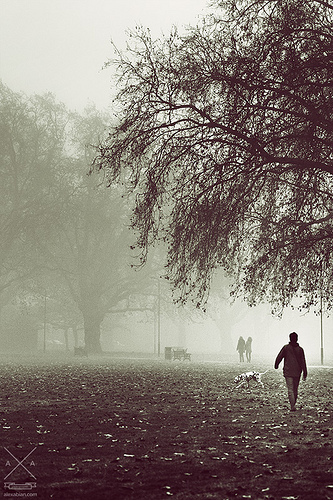 London FIelds by Alex Abian