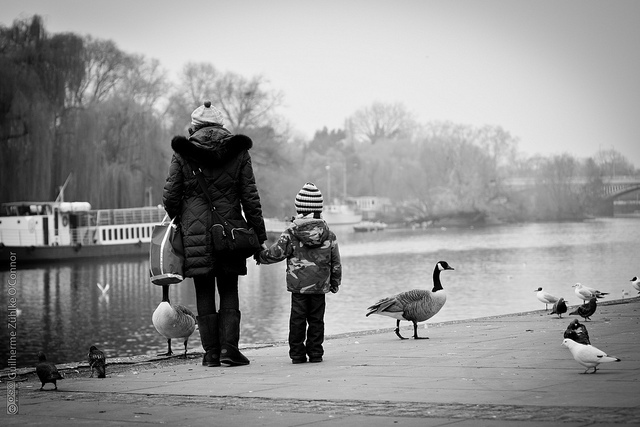 Mom, Son and Birds by Guilherme Zuhlke O'Connor