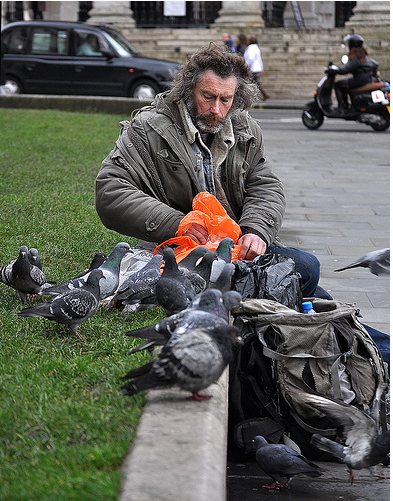 A man and his birds by John Kortland
