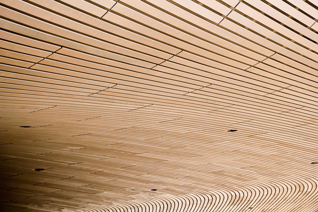 Parts of the building are beautiful; here, the roof, with its fingerprint-like pattern, overhangs the entrance