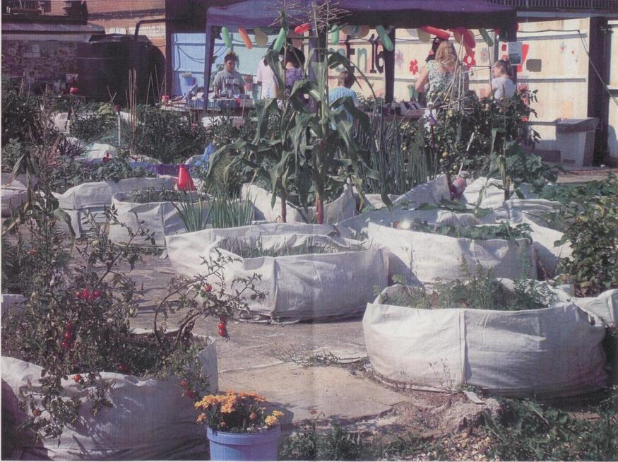 Jean McQuaid and GreEn 16 in Canning Town: vegetables and flowers grow in builders' bags on a derelict site in Canning Town, earmarked for Crossrail