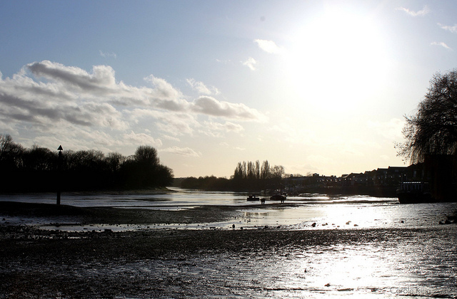Sunny, muddy river at Chiswick, by curry15