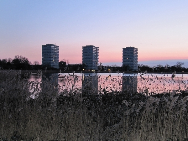 The New Nature: Want To Write About London's Wild Side?