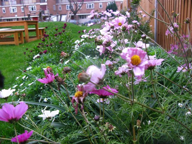 Eric Street community play garden, Tower Hamlets led by Tanya Nalywajko