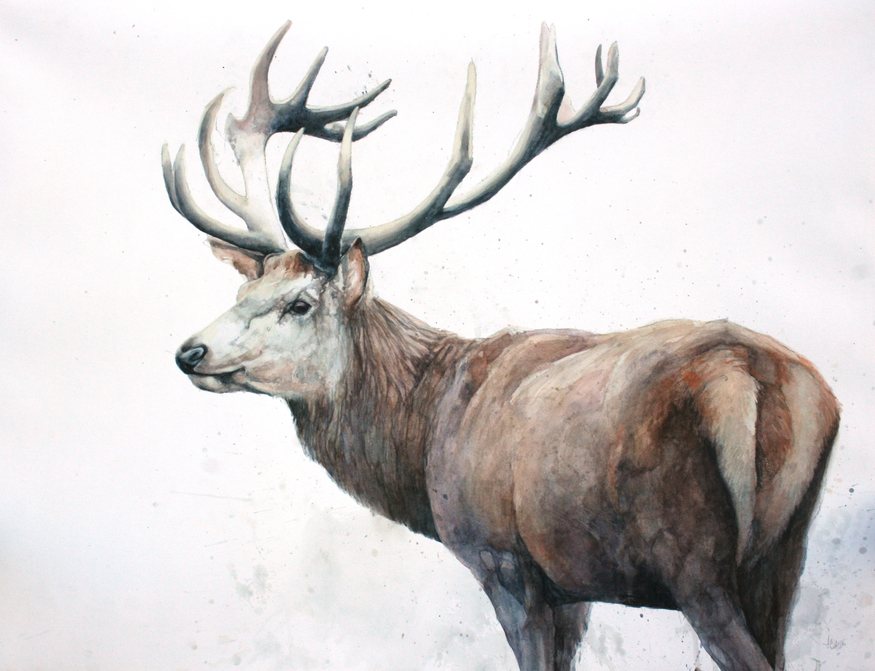 Alex Egan, Red Stag