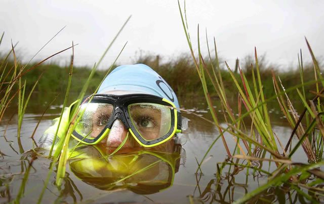 The World Bog Snorkelling Championships is a Welsh festival that takes place in the Waen Rhydd Peat Bog, in the town of Llanwrtyd Wells in Powys