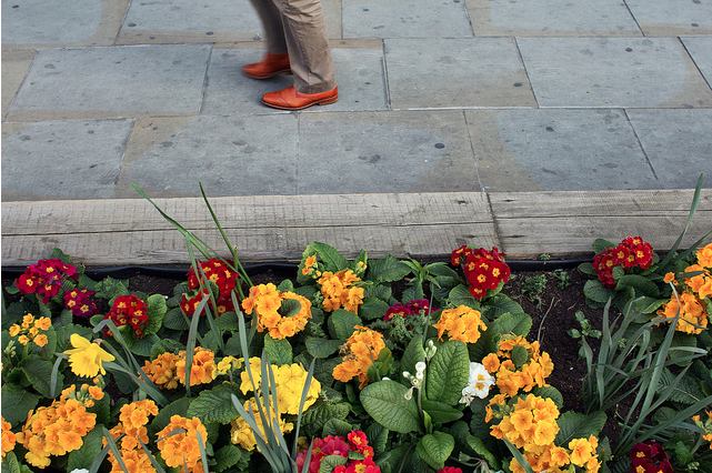 The Friday Photos: Floral London