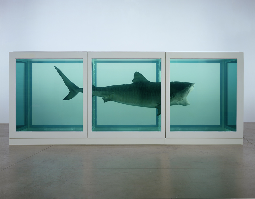 The Physical Impossibility of Death in the Mind of Someone Living. 1991 © Damien Hirst and Science Ltd. All rights reserved. Photographed by Prudence Cuming Associates