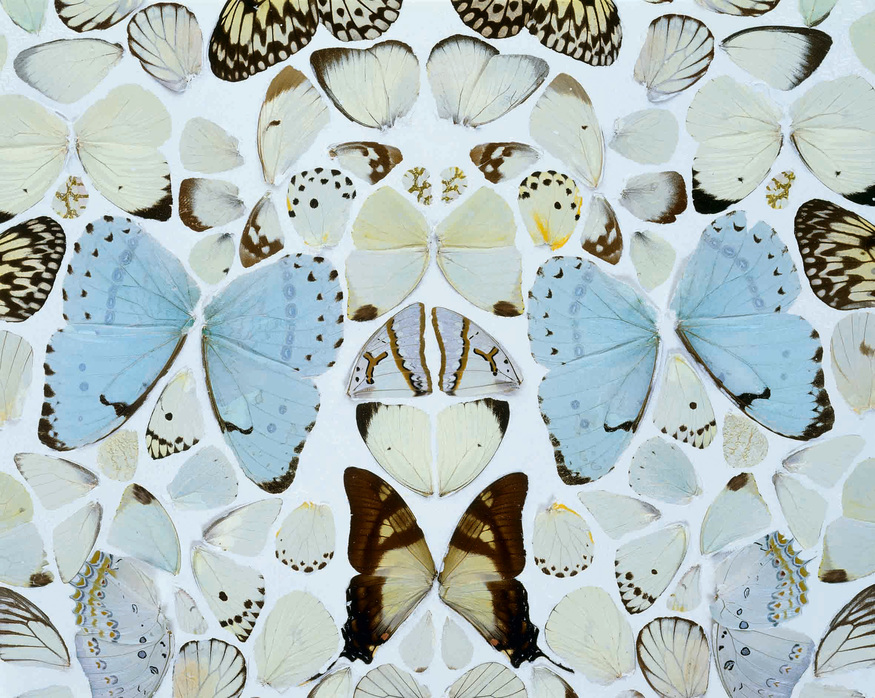 Sympathy in White Major - Absolution II  2006 © Damien Hirst and Science Ltd. All rights reserved. Photographed by Prudence Cuming Associates