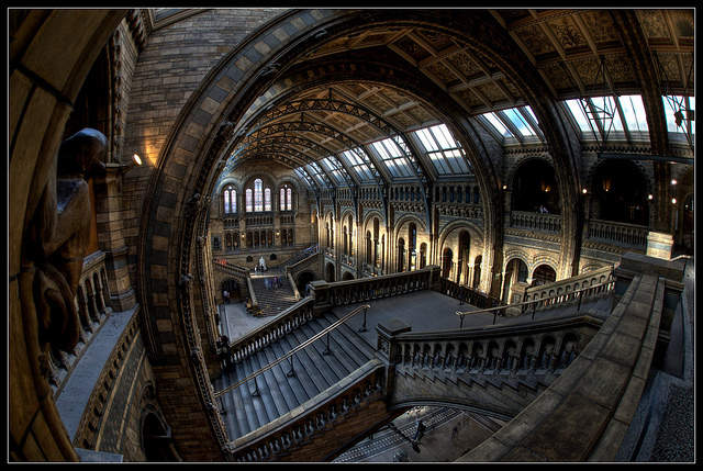 Natural History Museum, by Romany WG