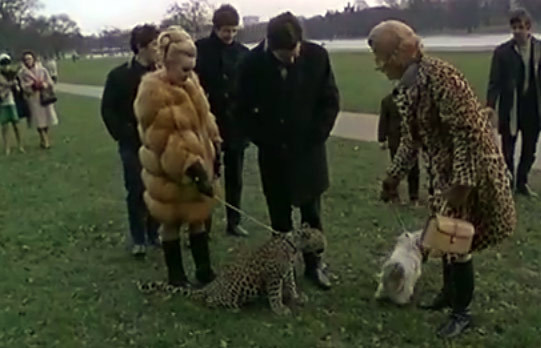 Video: Leopard On A Lead In Sixties London