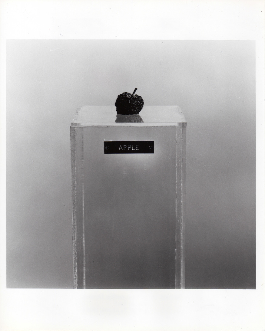 Yoko Ono, Apple (withered state). Photo by Iain Macmillan. © Yoko Ono