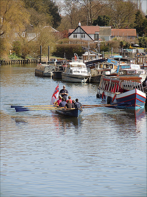 Rowing near Twickenham, by Andy Blackwell