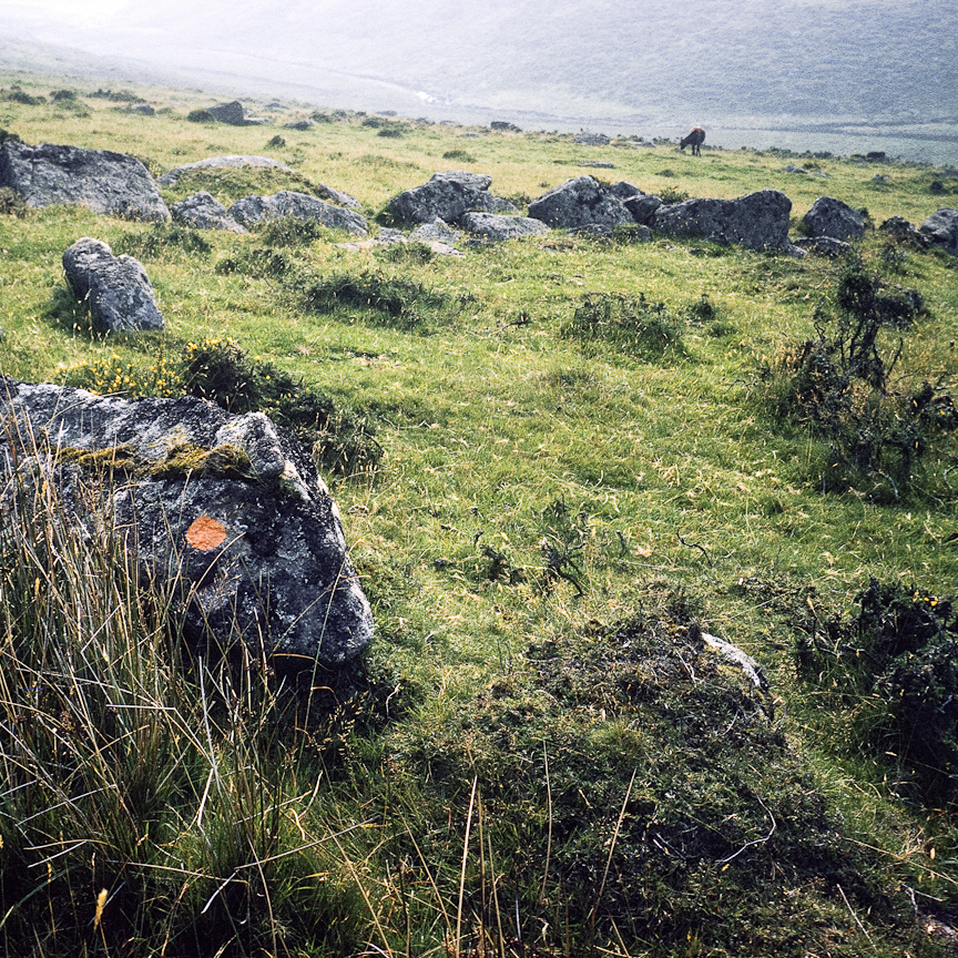 Trail Markers 1969 photograph  Walk on Dartmoor to ancient wood, England  scanned from 35mm color slide
