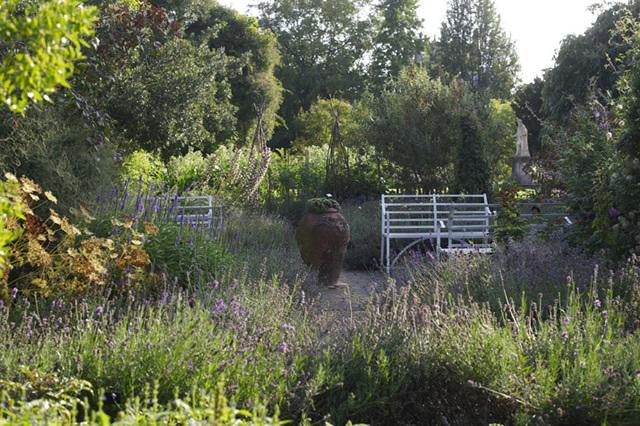 The Chelsea Physic Garden  © Charlie Hopkinson