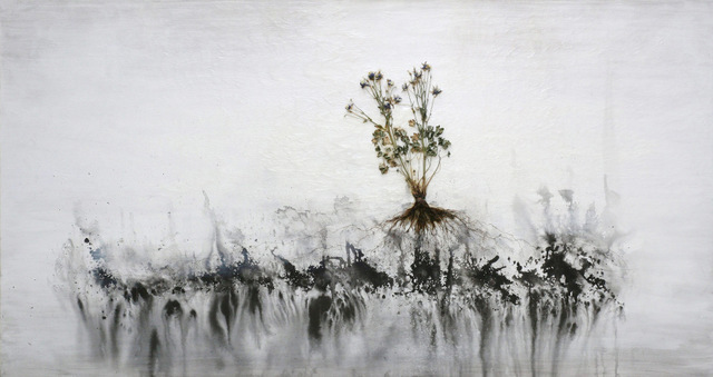 Jay Hyung Kim, Plants are Rooted in the Mind
