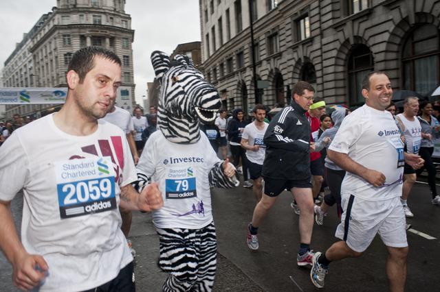 Zebra running.