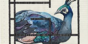 Art Review: Fran Giffard - O for Ornithology @ 10 Grosvenor St