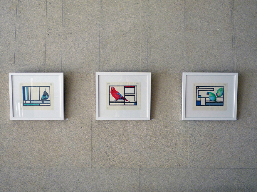 Fran Giffard, 'V', 'R' and 'Z' from the series 'O for Ornithology'.