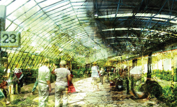 Could Waterloo International Become A Greenhouse?