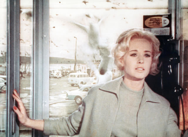Tippi Hedrem as Melanie Daniels in The Birds, 1963. Universal Pictures/Photofest/The Kobal Collection
