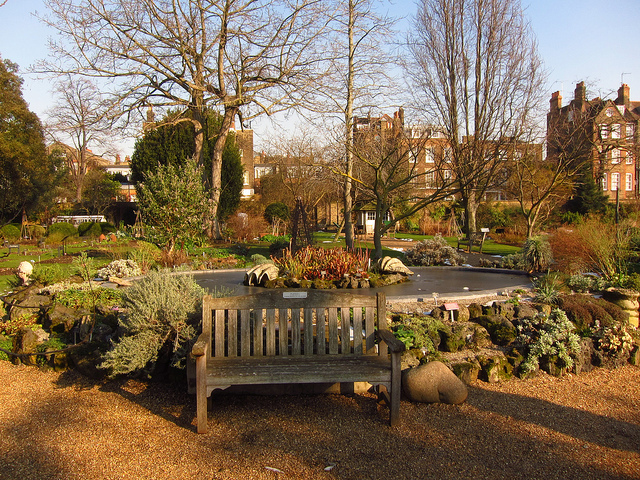 A lovely autumnal shot of the Chelsea Physic Garden by Laura Nolte
