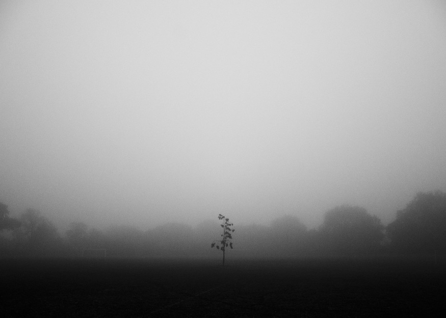 A foggy morning in Dulwich Park, South London, October 2012