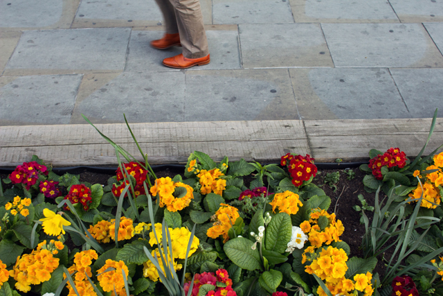 Shoes, Tower Hill