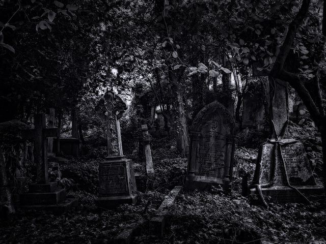 Highgate Cemetery, by Alan E Taylor