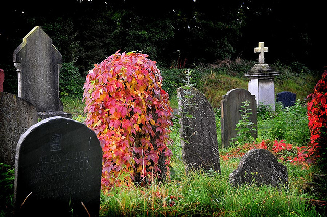 The Friday Photos: London Cemeteries
