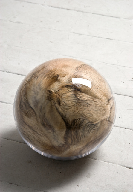 Adeline de Monseignat, Hairy Eye Ball, 2011. Courtesy the artist and Ronchini Gallery